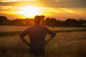 man standing outside in field looking at sunset