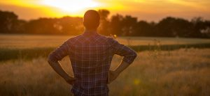 male farmer standing in a field with sun setting